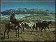 Rustler's Moon by L.D. Edgar, Western Heritage Studio, Cody Wyoming
